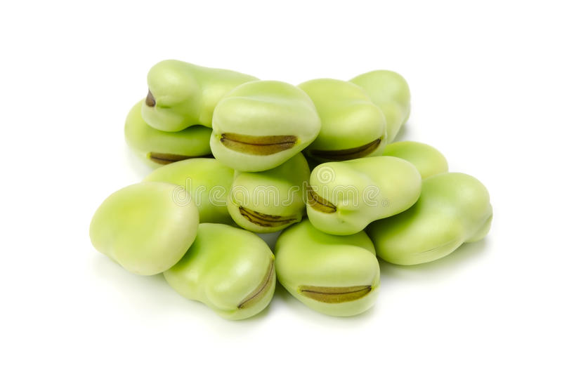 Broad bean royalty free stock photography