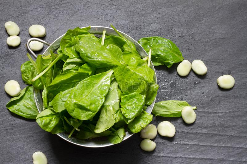 Broad bean and spinach healthy diet food. Closeup stock image