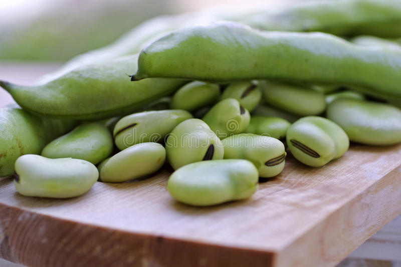 Broad beans. Pile of green Broad beans royalty free stock image