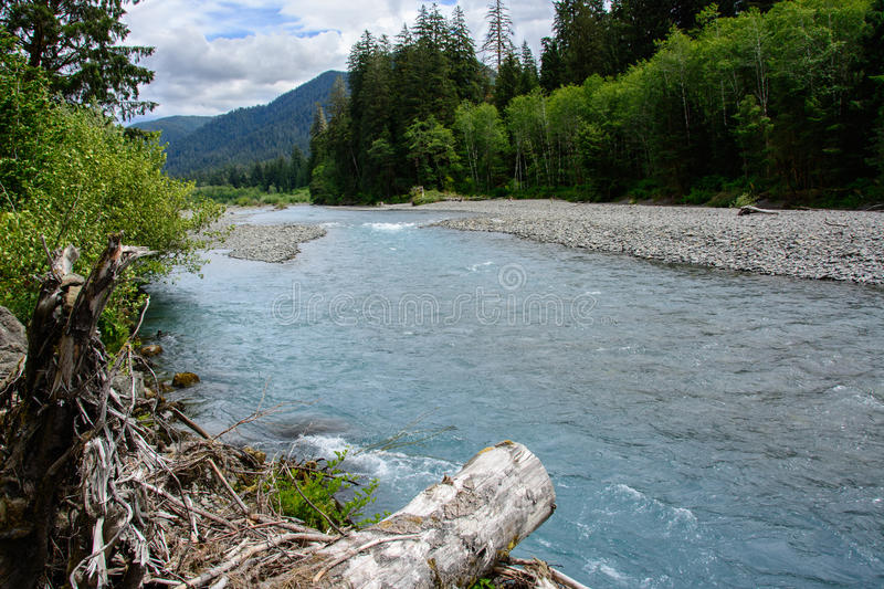 Broad Hoh River in Olympic National Park, Washington, USA. Broad Hoh River in Olympic National Park, Washington stock photos