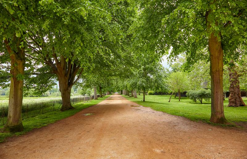 Broad walk. Christ Church. Oxford University. England stock photography