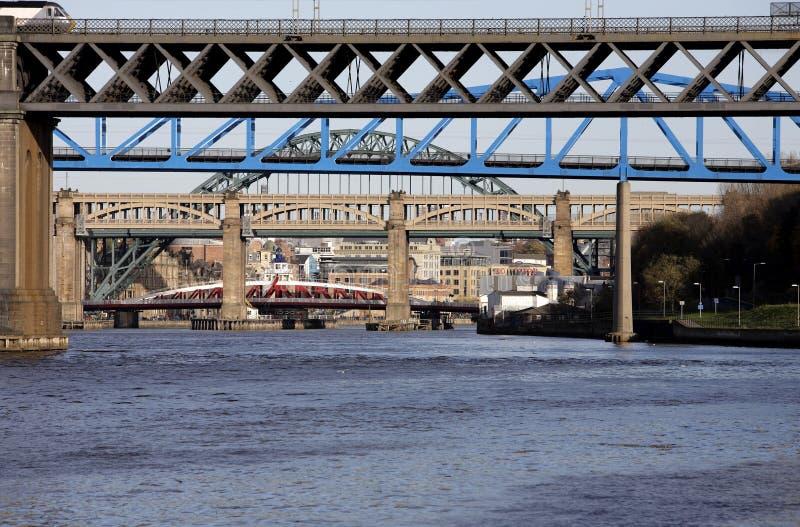 broar arkivbild