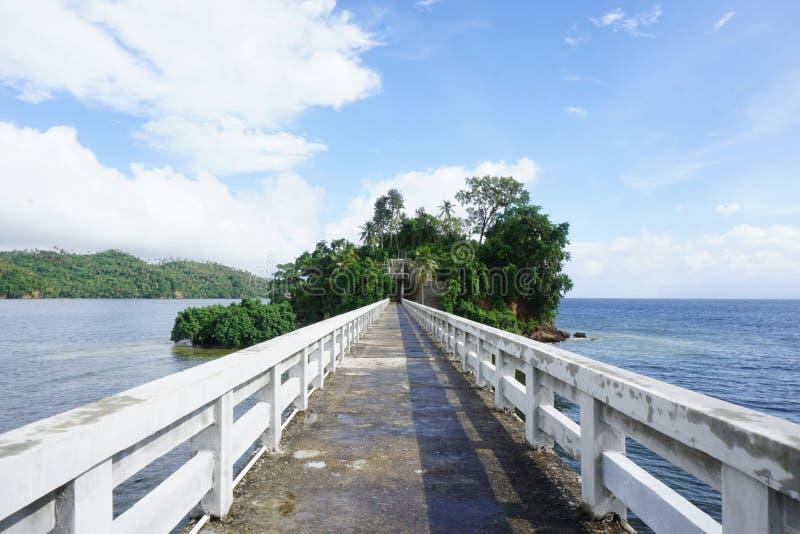 Broarna av Samana royaltyfri bild