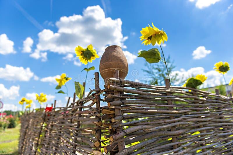 Brocca dell'argilla su un recinto di legno con i girasoli fotografia stock