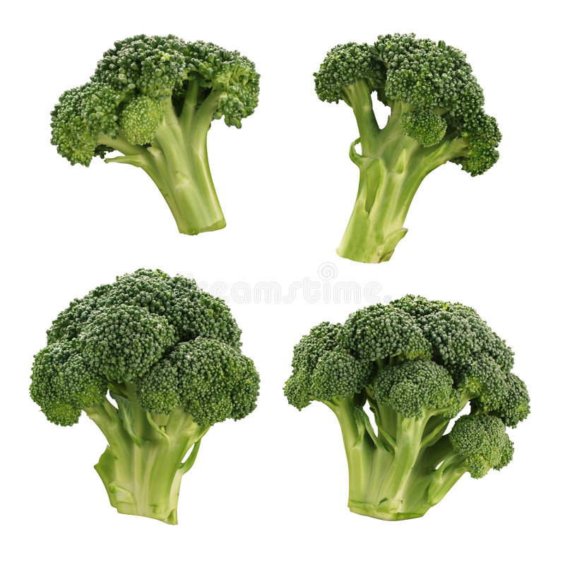 Broccoli. Isolated on a white background. Isolation is on a transparent layer in the PNG format stock images