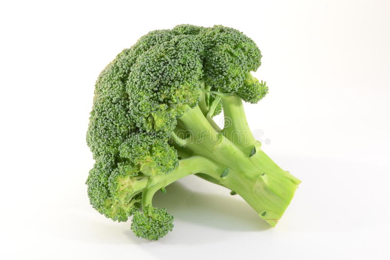Broccoli. Fresh broccoli isolated on white background