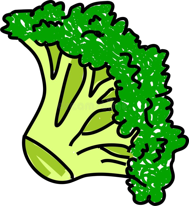 broccoli stock illustrationer