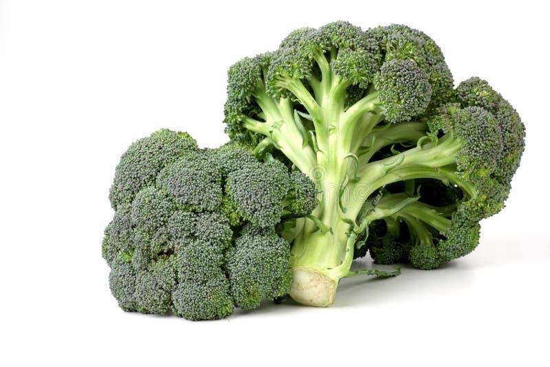 Broccoli arkivfoto