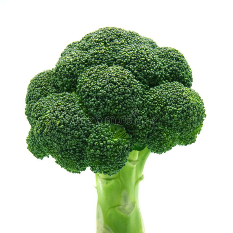 Broccoli. Isolated on white background stock photography