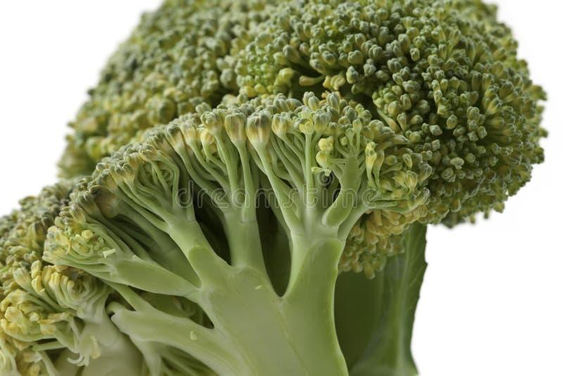 Download Broccoli stock foto. Afbeelding bestaande uit groenten - 39106900