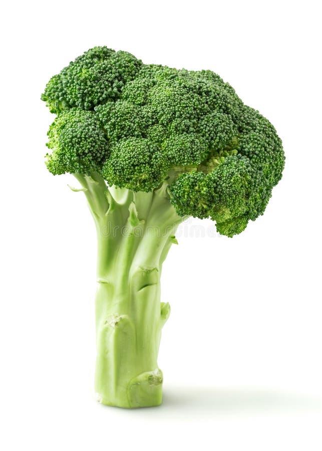Download Broccoli image stock. Image du fleurons, blanc, vitamine - 45364629
