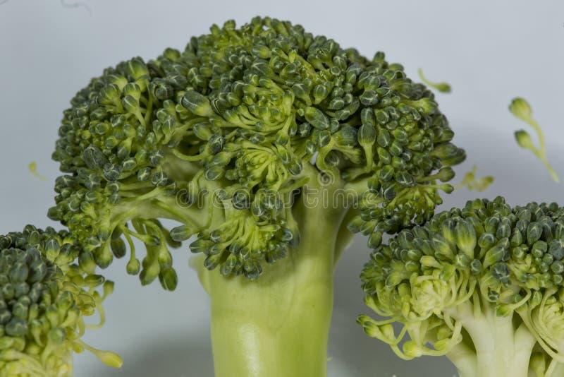broccoli stock foto's