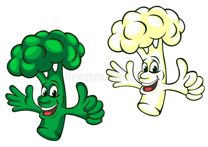 Download Broccoli and cauliflower stock vector. Illustration of bunch - 28629244