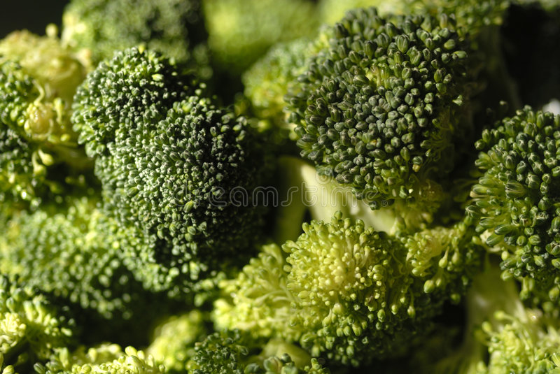 Broccoli Close Up stock photo