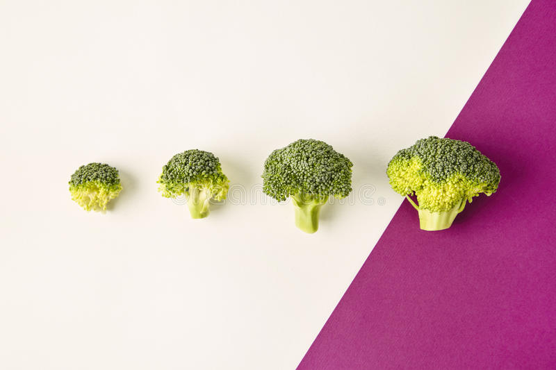 Broccoli on colored violet white background. Diagonal. Seasonal vegetables in modern style design pattern stock photos