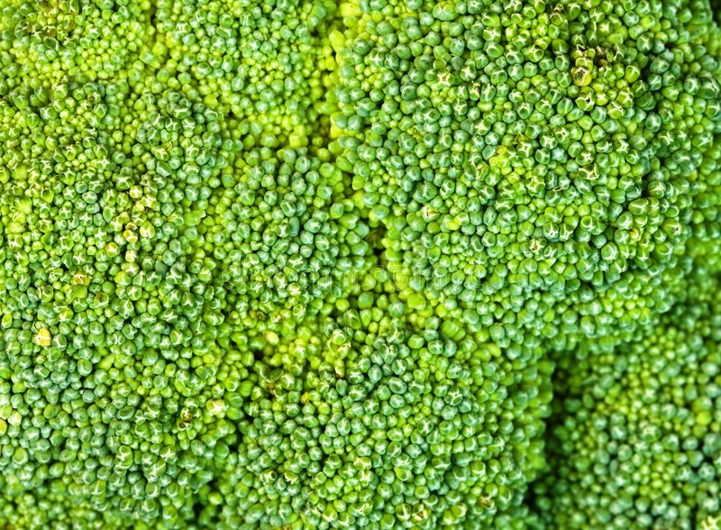 broccoli de fond images stock