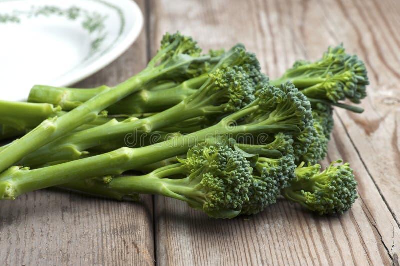 Broccoli de Tenderstem photo stock