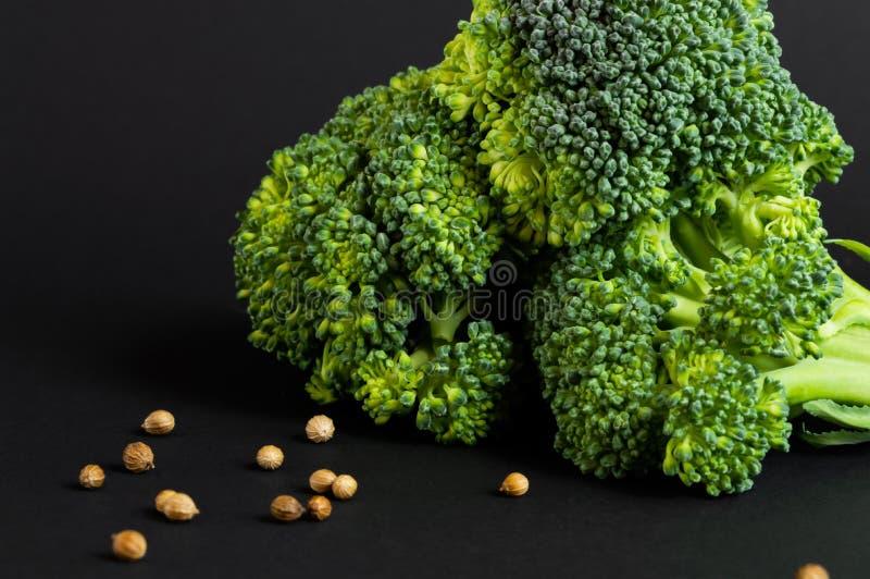 Broccoli e coriandolo freschi su fondo nero Fine in su Alimento sano fotografia stock libera da diritti