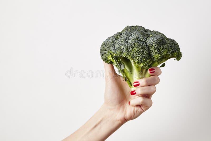 Broccoli för den nya grönsaken i kvinnahand, fingrar med rött spikar manikyr som isoleras på vit bakgrund, det sunda livsstilbegr fotografering för bildbyråer