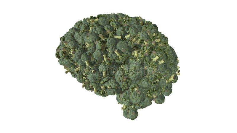 Vegan brain brain built from broccoli plants  - 3D illustration. Broccoli florets in the shape of a brain illustrating vegetarian and vegan lifestyle vector illustration