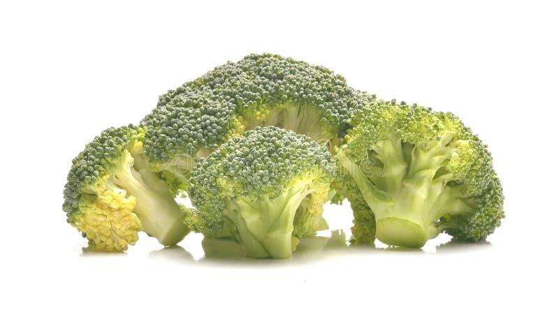 Broccoli frais d'isolement sur le fond blanc photos libres de droits