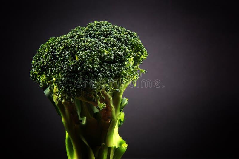 Broccoli freschi con un fondo nero fotografia stock