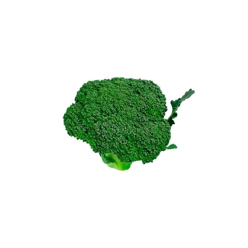 Broccoli freschi succosi saporiti verdi fotografia stock libera da diritti