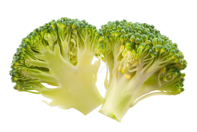 Download Broccoli Isolated Royalty Free Stock Image - Image: 36449276