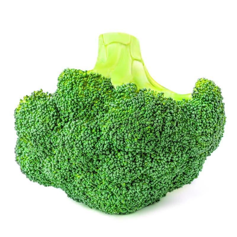 Broccoli isolated on white background. Fresh Broccoli vegetable closet up. Organic Food concept stock photos