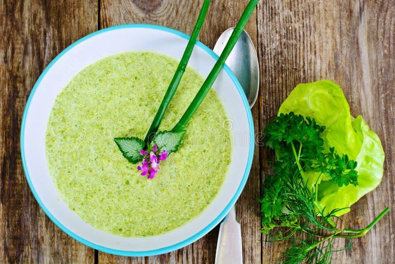 Broccoli lagar mat med grädde soppa arkivfoto