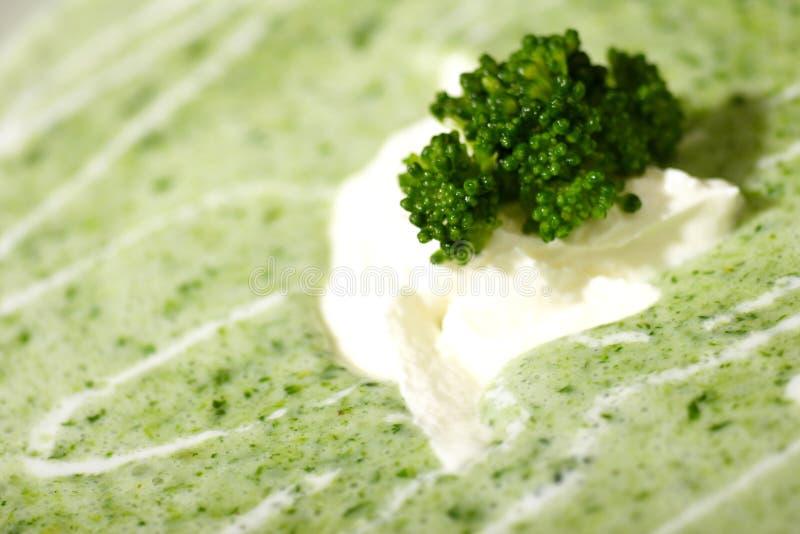 broccoli lagar mat med grädde soup royaltyfri fotografi