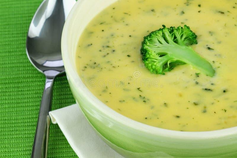 broccoli lagar mat med grädde soup royaltyfria bilder