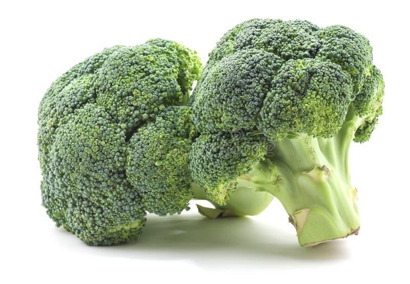 Broccoli op wit stock afbeelding