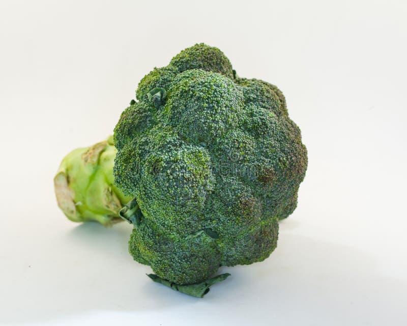 Broccoli op witte achtergrond stock foto