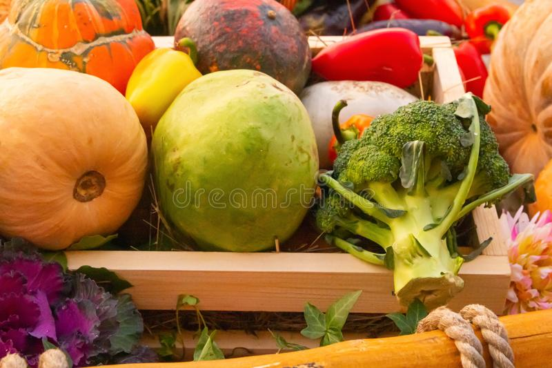 Broccoli, pepper, pumpkin lie in a wooden box of assorted vegetables, autumn harvest stock photography