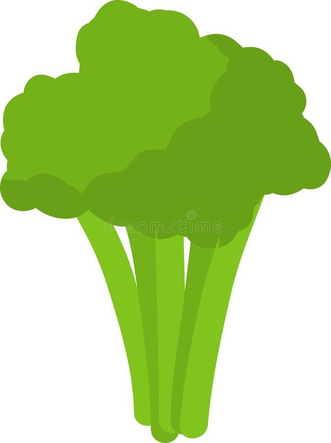 Broccoli Plantgoed, geïsoleerd op witte achtergrondvector Koken Ingrediënt vector illustratie