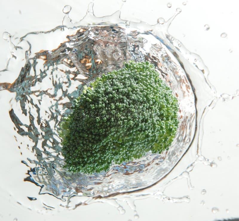 broccoli plaskar arkivfoton