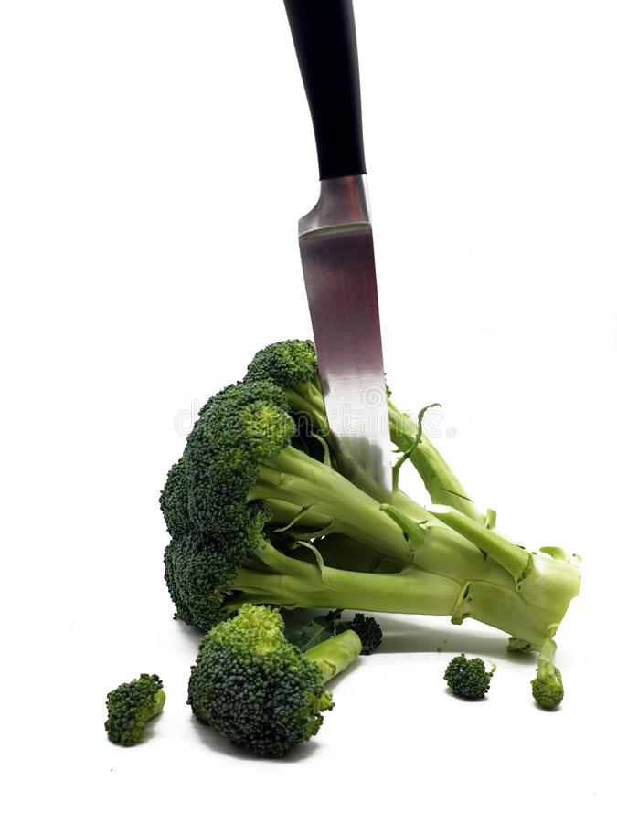 Broccoli released on white background royalty free stock photo