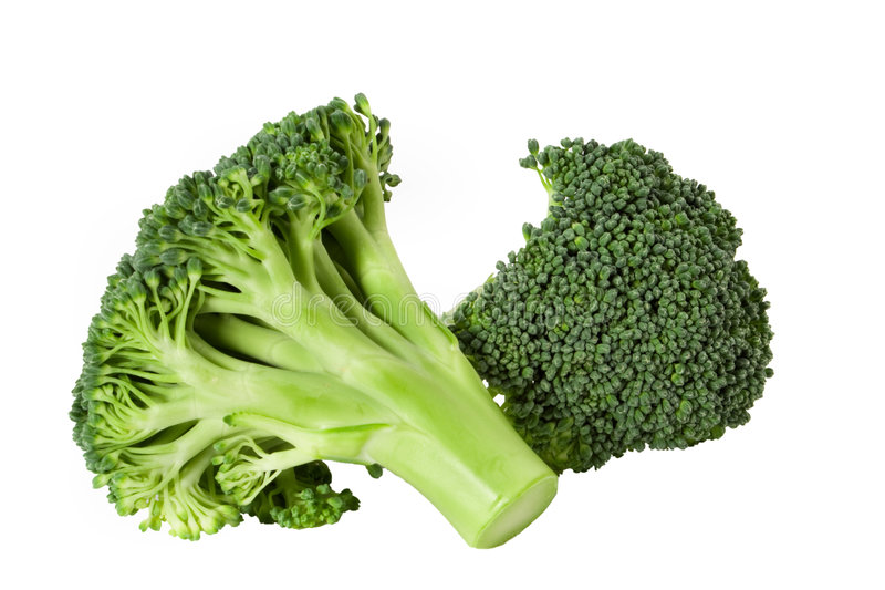 Broccoli sheaf. Nutritious broccoli sheaf isolated on white background royalty free stock photo