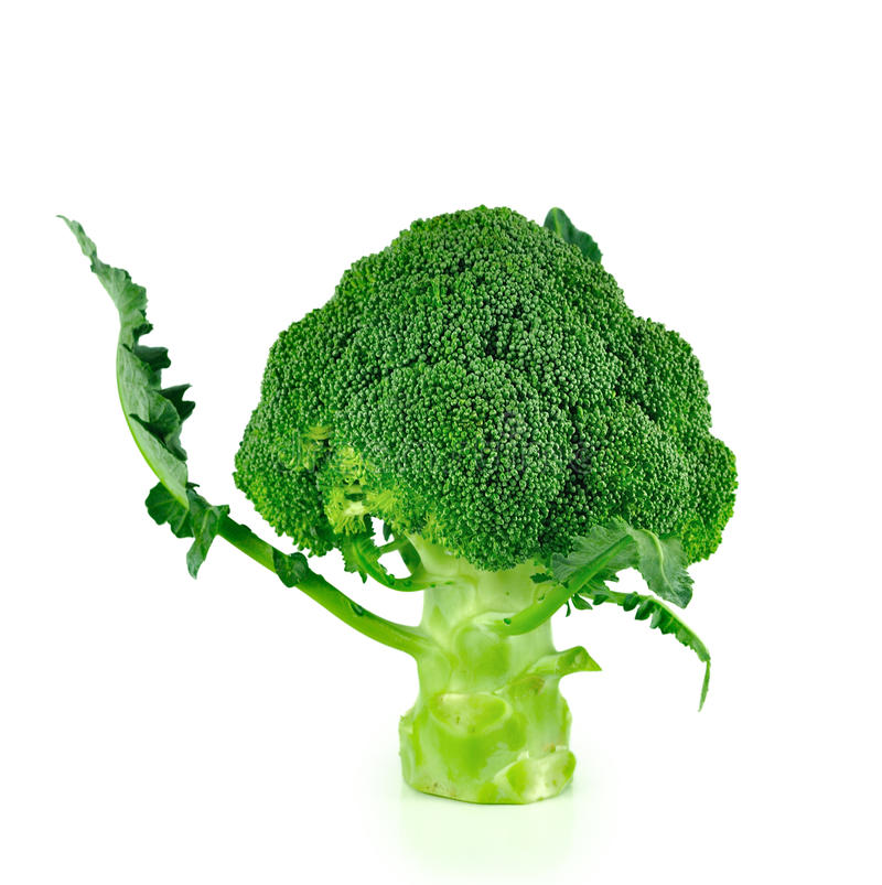 Broccoli stänger sig upp isolerat på vit bakgrund royaltyfria foton