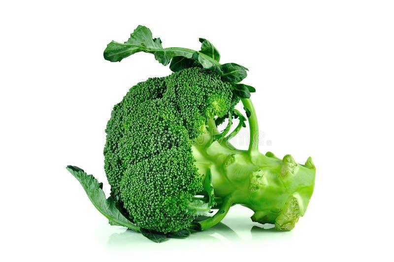 Broccoli stänger sig upp på vit bakgrund royaltyfri foto