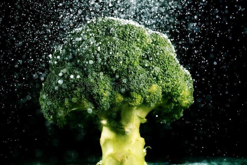 Broccoli sulla forcella nera dell'alimento del fondo fresca immagini stock
