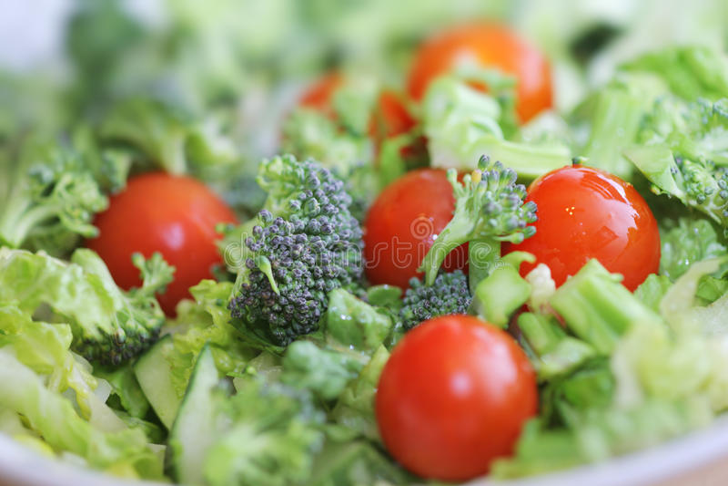 Broccoli tomato salad. Fresh broccoli and tomato salad, Macro closeup, shallow DOF stock photo