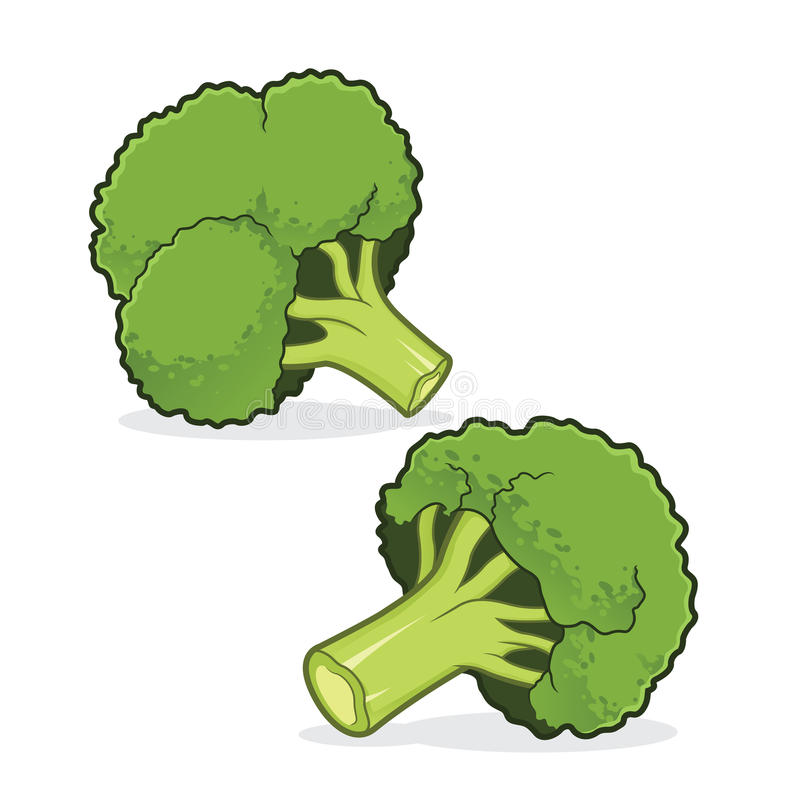 broccoli stock vector illustration of plant cartoon 74369768 broccoli stock vector illustration of