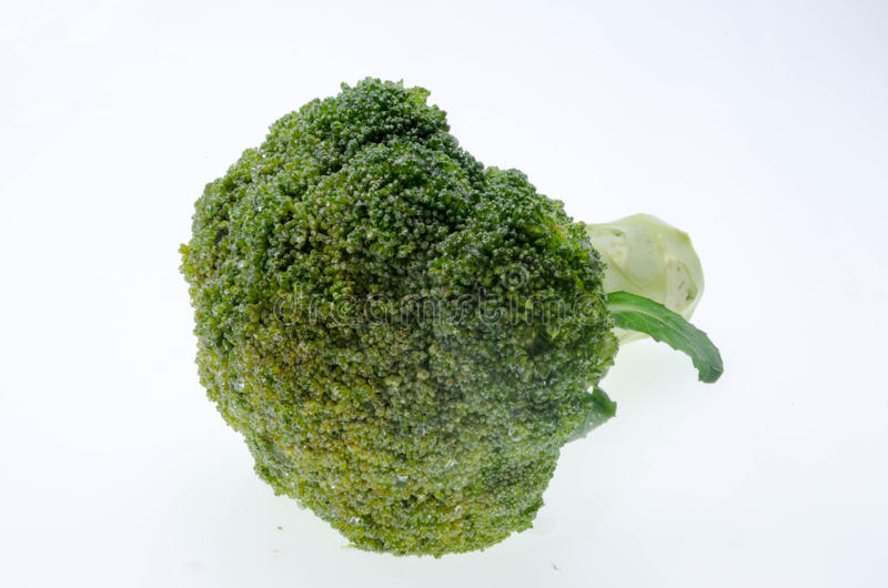 Broccoli vegetable isolated on white background stock photography