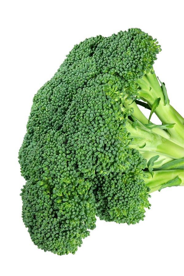 Download Broccoliclippingbana fotografering för bildbyråer. Bild av mål - 520847