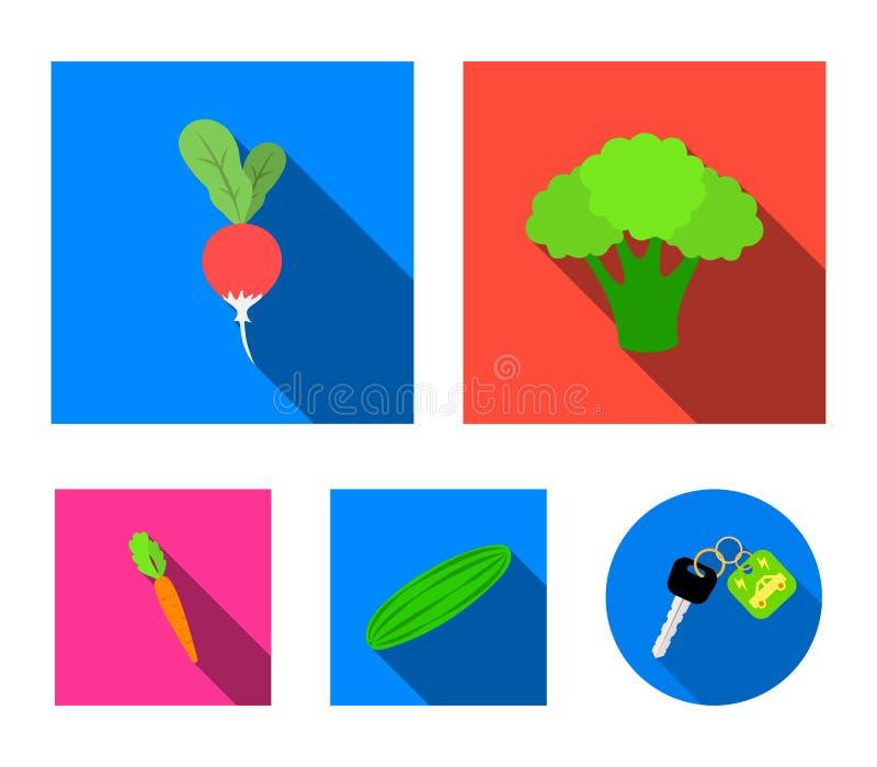 Broccolikool, radijs, groene komkommer, wortelen met bovenkanten Groenten geplaatst inzamelingspictogrammen in vlak stijl vectors vector illustratie