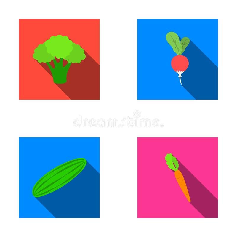 Broccolikool, radijs, groene komkommer, wortelen met bovenkanten Groenten geplaatst inzamelingspictogrammen in vlak stijl vectors stock illustratie