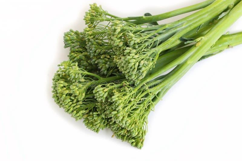 Broccolini stock foto's