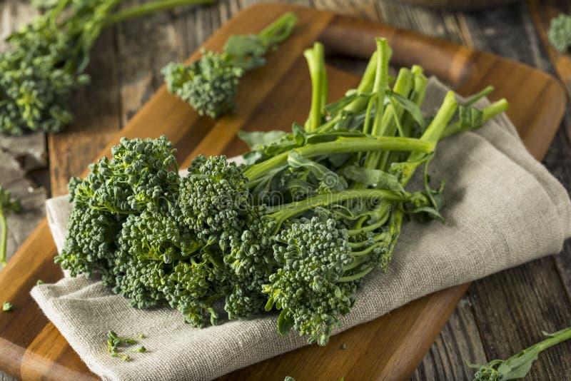 Broccolini orgánico verde crudo fotos de archivo